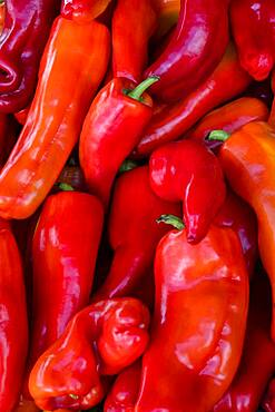 Overhead view of red Cuban peppers