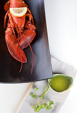 Still life of a lobster
