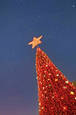 Low angle view of red Christmas tree against sky at night