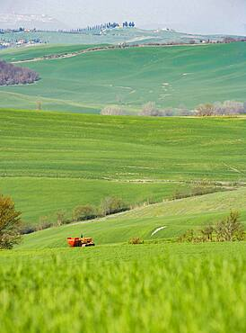 Italy, Tuscany, Val D'Orcia, Pienza, Combine harvester in green field