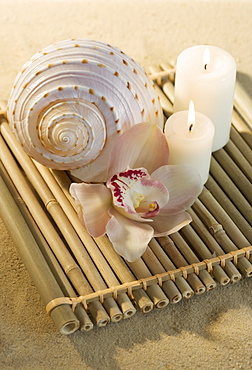 Still life of orchids, candles and seashell