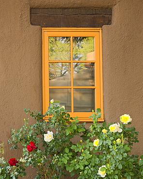 Window with roses, USA, New Mexico, Santa Fe