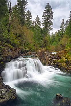 Waterfall on Santiam river, Marion County, Oregon