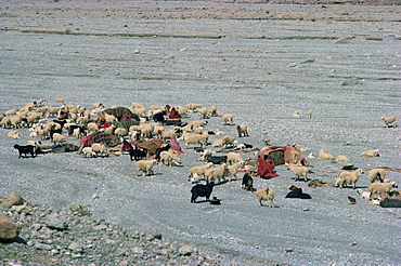Baluchi nomads, Bolan Pass, Baluchistan, Pakistan, Asia