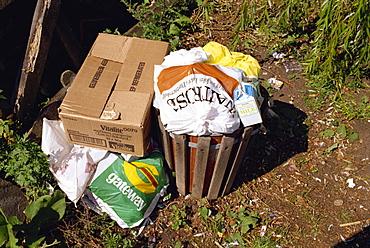 Overflowing rubbish bin, England, United Kingdom, Europe