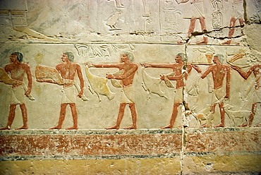 Painted reliefs in mastaba (tomb), Saqqara, Egypt, North Africa, Africa