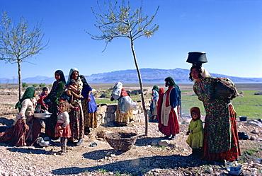 Qashqai tribe, near Shiraz, Iran, Middle East
