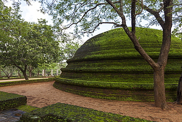 A dome shaped structure in the Kiri Vihara Buddhist temple ruins, Polonnaruwa, UNESCO World Heritage Site, Sri Lanka, Asia