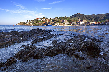 Looking across the bay from Collioure, Pyrenees-Orientales, Languedoc-Roussillon, France, Europe
