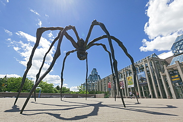 Maman, a sculpture of a spider by Louise Bourgeouis, National Gallery of Canada, Ottawa, Ontario, Canada, North America