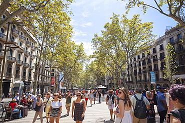 Las Ramblas, Barcelona, Catalonia, Spain, Europe