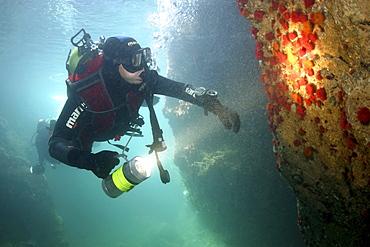 Diver in caves. UK   (RR)