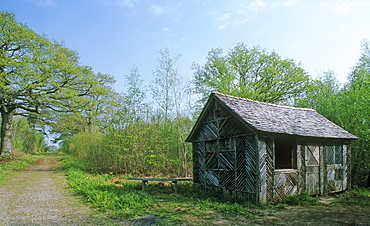 Forester's hut, Gloucestershire, UK