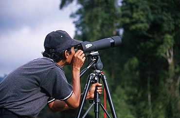 Bird spotting in Gunung Halimun National Park, West Java, Indonesia