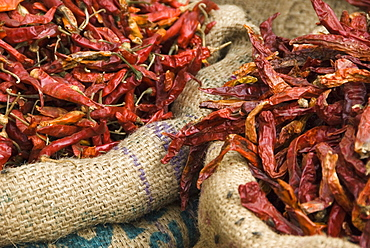 Dried chilli peppers in hessian sack for sale, Udaipur, Rajasthan, India