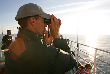 Whale watching from a ferry in Bay of Biscay, SW Europe   (RR)