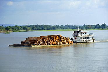 Transporting logs on the Curua-Unn River, near Amazon, Brazil, South America