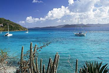 White Bay, Jost Van Dyke island, British Virgin Islands, West Indies, Central America
