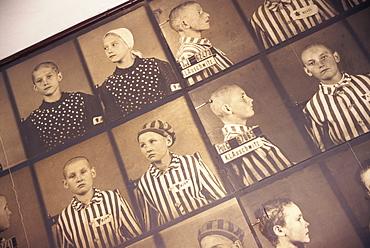Photos of victims, Auschwitz, Makopolska, Poland, Europe