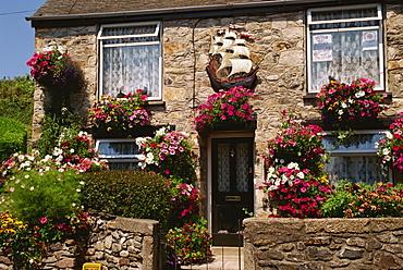Cottage garden, Marazion, Cornwall, England, United Kingdom, Europe