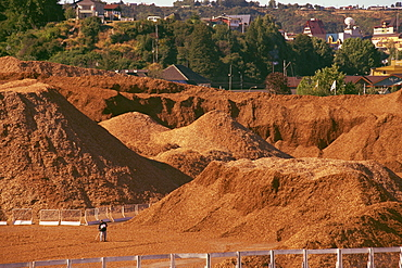 Woodchip stockpile for export to Japan, Puerto Montt, Chile, South America