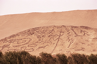 Pre-Columbian geoglyphs, Norte Grande, Arica, Chile, South America