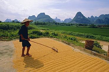 Farmer turning grain, near Yangshuo, Guangxi Province, China