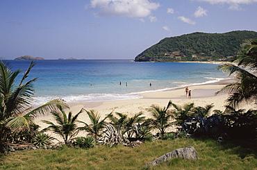 Beach at Anse des Flamands, St. Barthelemy, Lesser Antilles, West Indies, Caribbean, Central America