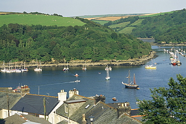 River Fowey and forest area of Hall Walk, Q monument visible through trees, Cornwall, England, United Kingdom, Europe