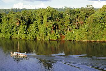 Jari River, Amazon area, Brazil, South America