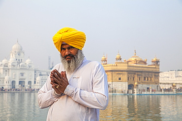 Sikh man in front of The Harmandir Sahib (The Golden Temple), Amritsar, Punjab, India, Asia