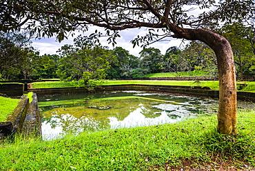 Water Gardens at Sigiriya Rock Fortress (Lion Rock), Sigiriya, North Central Province, Sri Lanka, Asia