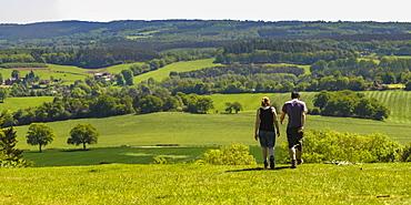 Box Hill, North Downs, Surrey Hills, Surrey, England, United Kingdom, Europe