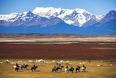 Horse trek on an estancia (farm), El Calafate, Patagonia, Argentina, South America