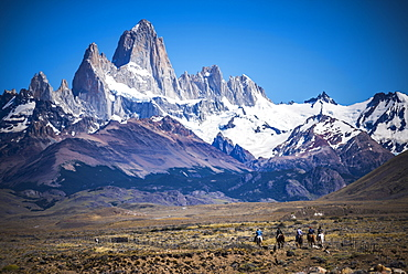 Gauchos riding horses and herding sheep with Mount Fitz Roy behind, UNESCO World Heritage Site, El Chalten, Patagonia, Argentina, South America