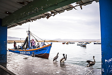 Fishing boat at fishing harbour in Paracas National Reserve (Reserva Nacional de Paracas), Ica, Peru, South America
