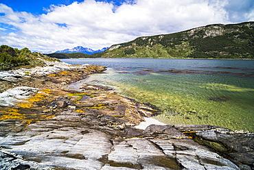 Tierra Del Fuego National Park, Ushuaia, Patagonia, Argentina, South America