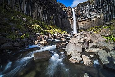 Svartifoss (Black Waterfall) and the Basalt Columns, Skaftafell, Vatnajokull National Park, South Region of Iceland (Sudurland), Iceland, Polar Regions