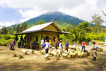 Final stop, the sulphur weighing station at Kawah Ijen, Java, Indonesia, Southeast Asia, Asia