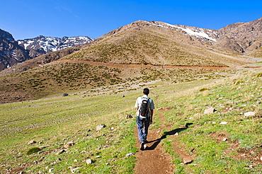 Trekking tour guide walking at Oukaimeden ski resort in summer, High Atlas Mountains, Morocco, North Africa, Africa