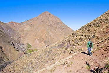 Tour guide trekking between Tacheddirt and Tizi n Tamatert, High Atlas Mountains, Morocco, North Africa, Africa