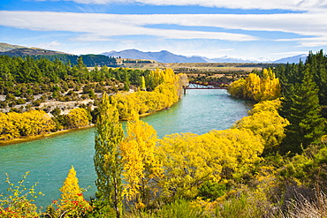Caravan crossing a bridge on the Clutha River in autumn, Wanaka, South Island, New Zealand, Pacific