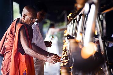 Buddhist monk praying at Sri Maha Bodhi in the Mahavihara (The Great Monastery), Anuradhapura, Sri Lanka, Asia