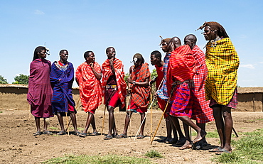 Masai Mara members sing tribal songs to greet guests to their village, Masai Mara National Reserve, Kenya, East Africa, Africa