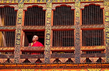 Portrait, mature Buddhist monk looking out of window, Punakha Dzong, Bhutan, Asia