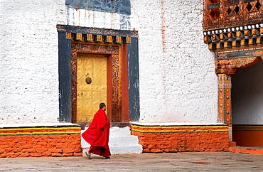 Buddhist monk, Punakha Dzong, Bhutan, Asia