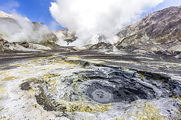 Boiling mud at an active andesite stratovolcano on White Island, off the east side of North Island, New Zealand, Pacific