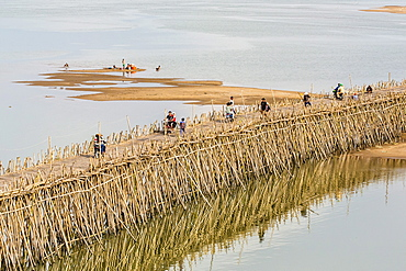 Bamboo bridge along the Mekong River near the capital city of Phnom Penh, Cambodia, Indochina, Southeast Asia, Asia