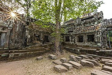 Jungle surrounded ruins at Ta Prohm Temple (Rajavihara), Angkor, UNESCO World Heritage Site, Siem Reap Province, Cambodia, Indochina, Southeast Asia, Asia