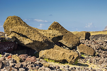Fallen moai at Ahu Akahanga on Easter Island (Isla de Pascua) (Rapa Nui), UNESCO World Heritage Site, Chile, South America